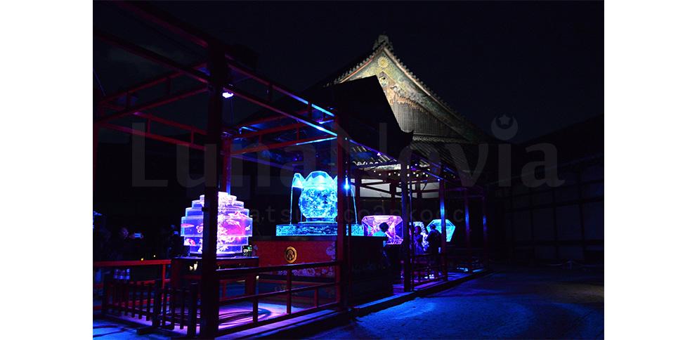【京都・二条城】アートアクアリウム城に行ってきました!