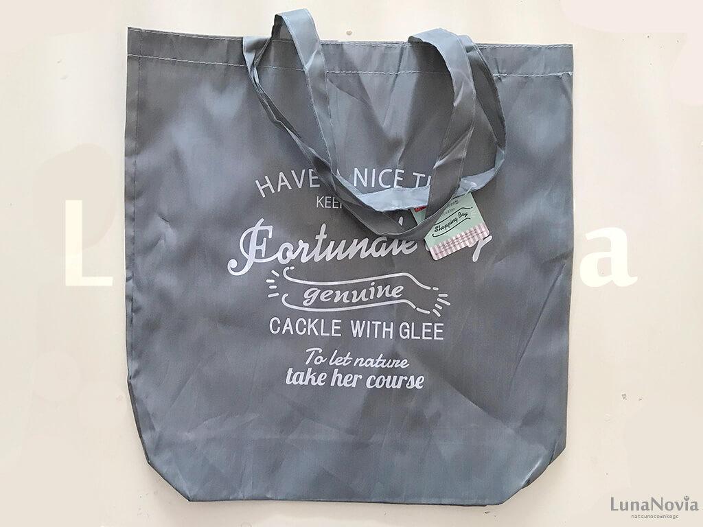 ディズニー旅行に行く前にダイソーで買ったトラベルアイテム ショッピングバッグ
